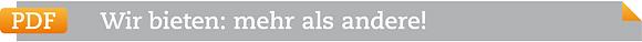 pdf-icon des Lohnsteuerhilfevereine Steuerring - Wir bieten mehr als andere